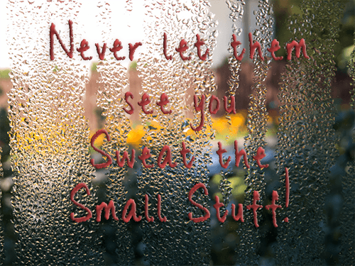 Never Let Them See You Sweat The Small Stuff